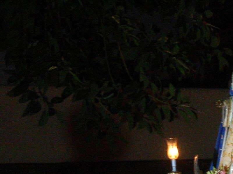 La Virgen de La Encarnación inicia su peregrinaje