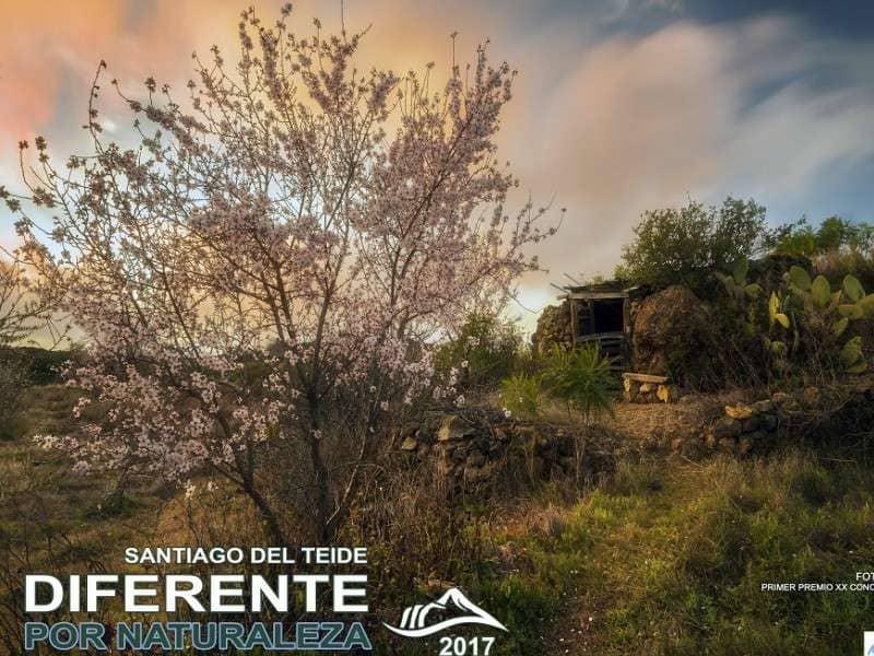 """Onda TenerifeComienza el programa educativo-ambiental """"Santiago del Teide: Diferente por Naturaleza"""""""