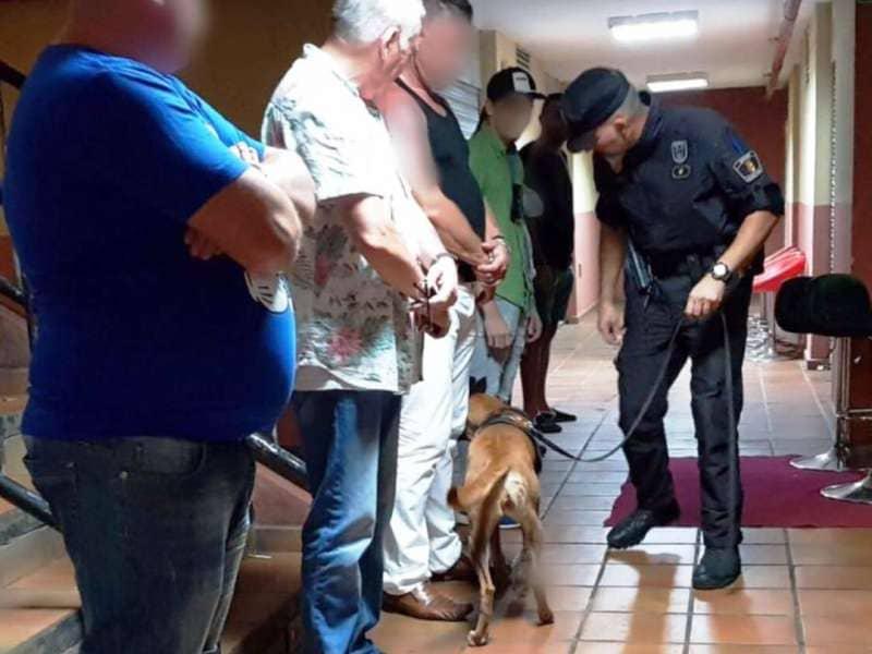 La Unidad Canina levanta 20 actas por tenencia de drogas en su primer fin de semana