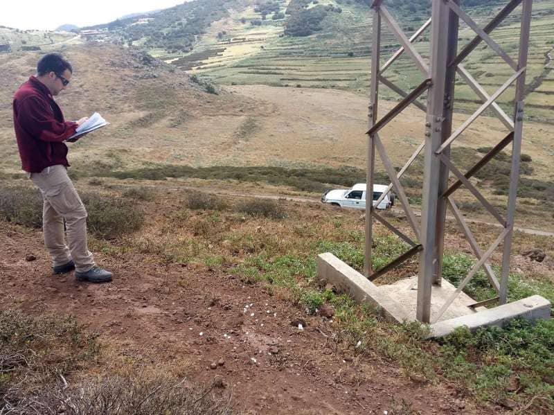 Endesa y Cabildo colaboran en la protección de aves en la Isla