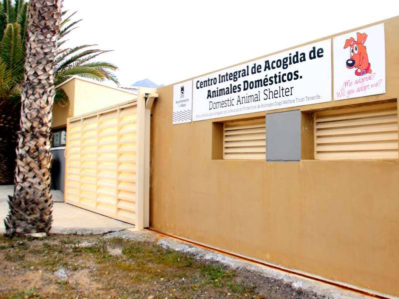 El Centro de Acogida de Animales abrirá sus puertas al voluntariado