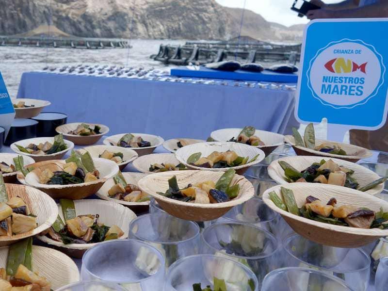 Calidad, sabor y sostenibilidad son las claves de Crianza de Nuestros Mares en Canarias